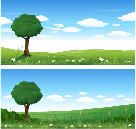 Tree nature landscape Vector