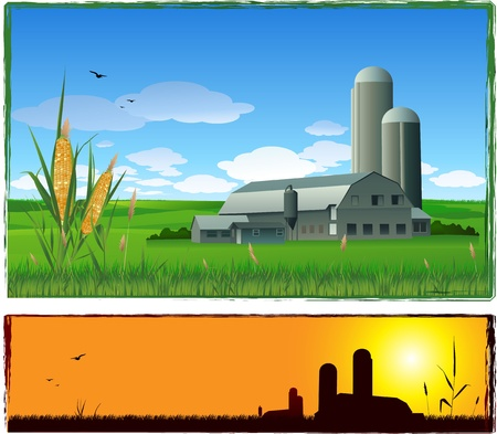 corn crop: Farm illustration