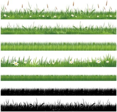 Raccolta di erba verde Archivio Fotografico - 8629944