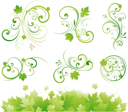 Floral pattern scroll shape Vector