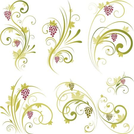 vid: Elementos de dise�o de uva de vinificaci�n