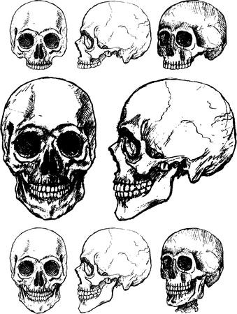 black people: Hand drawn skull