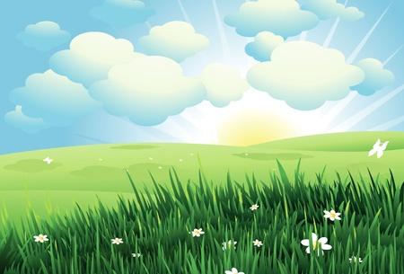 mountain meadow: Fondo de primavera hermosa Vectores