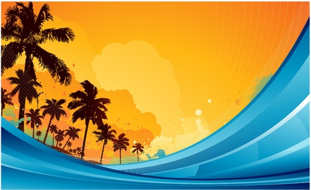 paradise beach: tropical summer background