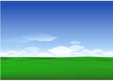 grass field: nature landscape