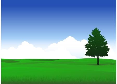 natuur landschap met eenzame boom Stock Illustratie