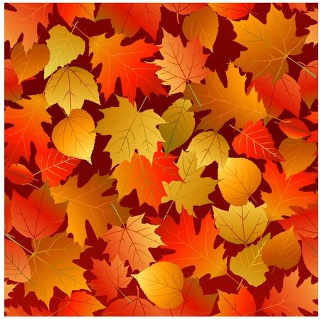 autumn leaves pattern Stock Vector - 8651402
