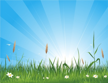 idyll: spring nature background