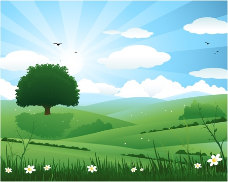 Beautiful spring landscape with a lonely tree Vector