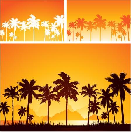 Tropical sunset background Illustration