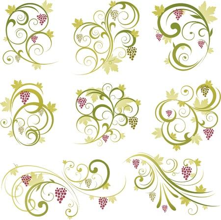 Elementos de diseño de uva de vino Foto de archivo - 8688102