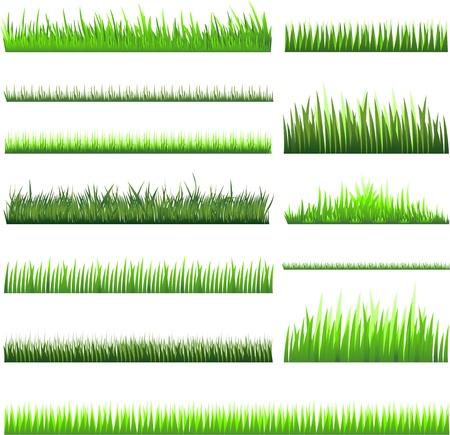 녹색 잔디 그림 일러스트