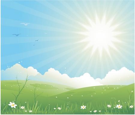 Spring landscape Stock Vector - 8978447