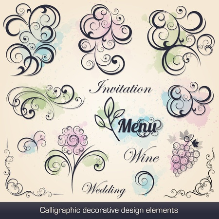 calligraphic decorative design elements collection Vector