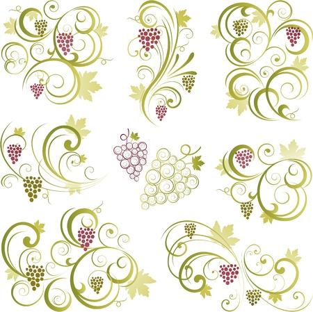 Grapevine swirling motifs