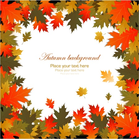 Frame made of autumn leaves Stock Vector - 14578948
