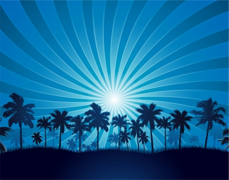 on palm tree: Tropical background with palm tree silhouette Illustration