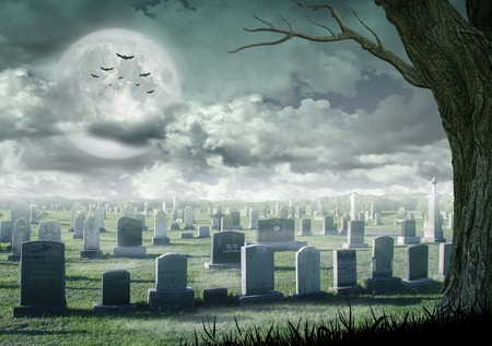 spooky tree: Halloween design - Spooky tree. Horror background with cemetery spooky tree and full moon. Space for your Halloween holiday text