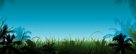 Jungle vector landscape vector illustration background