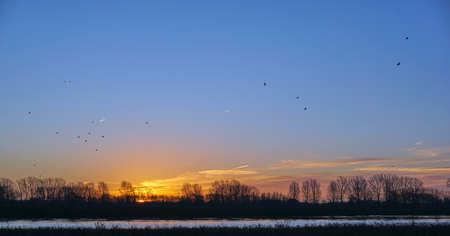 meuse: Sunrise River Meuse