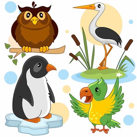Een reeks cartoonbeelden met dieren voor kinderen. Illustratie met een uil, een pinguïn, een reiger en een papegaai.