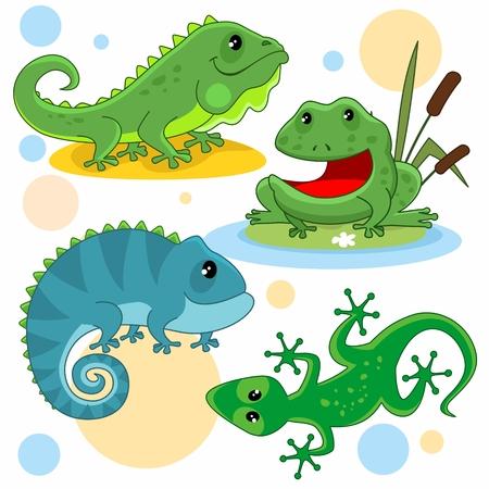 子供のための漫画の写真のセット。トカゲ、イグアナ、ヒキガエル、カエル、カメレオンのイラスト。  イラスト・ベクター素材