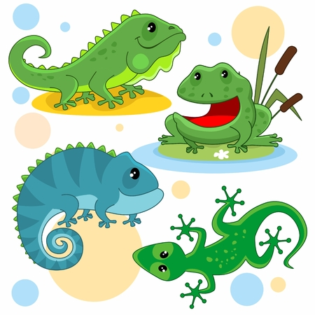 A set of cartoon pictures for children. Illustration with a lizard, iguana, toad, frog and chameleon.