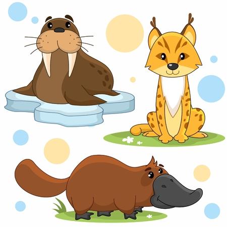 Een reeks illustraties van cartoondieren voor kinderen van luipaarden, vogelbekdieren en walrussen.