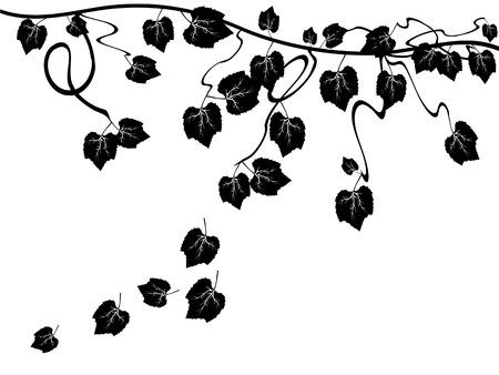 clip art wine: grape vine