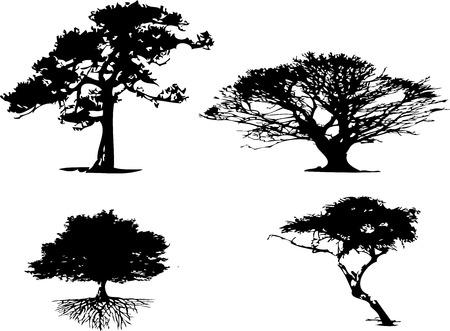 bomen zwart wit: 4 verschillende soorten boom silhouet  Stock Illustratie