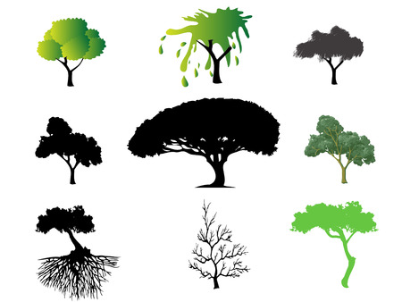 different type of trees Stock Vector - 6665507