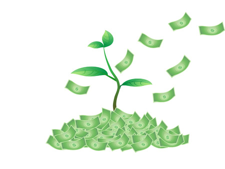 the concept of plant growing from the money Vector