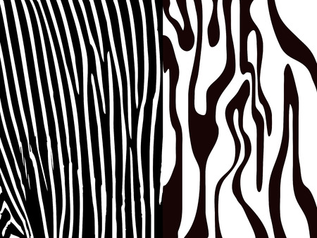 two different types of Zebra Print Vector