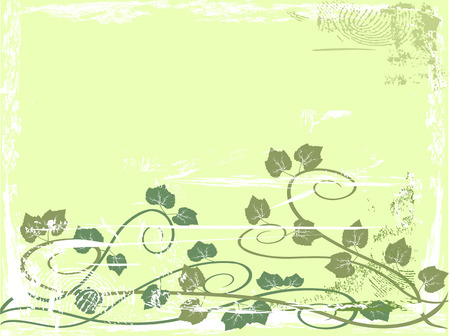 the background of grunge grape vine Stock Vector - 7096405