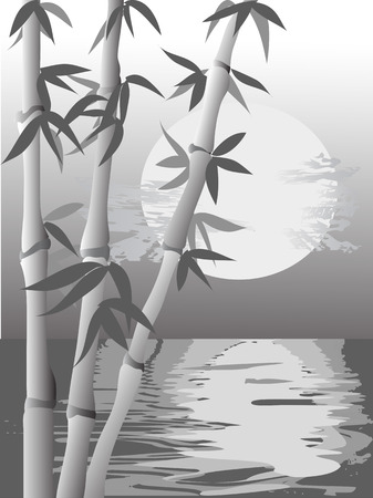 the white and black vision of bamboo Vector