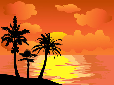 the beautiful landscape of palm trees island at sunset