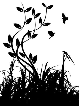 the silhouette of grass and birds 일러스트