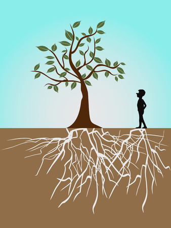 arbol con raices: un chico y el árbol con raíces  Vectores