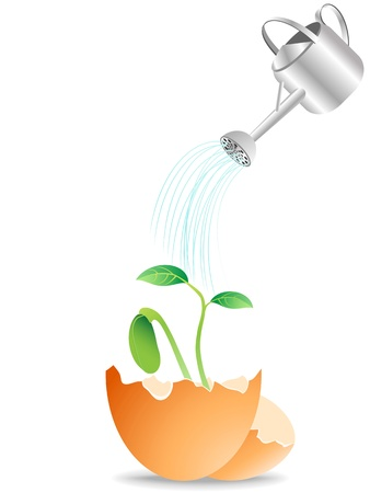 young plant growing from egg and watering it Stock Vector - 8976191