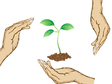 hands raound the green plant Stock Vector - 9232993