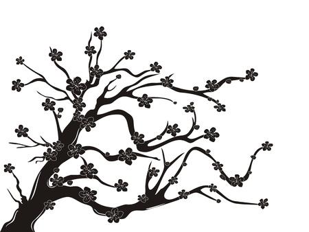흰색 배경에 벚꽃 나무의 실루엣