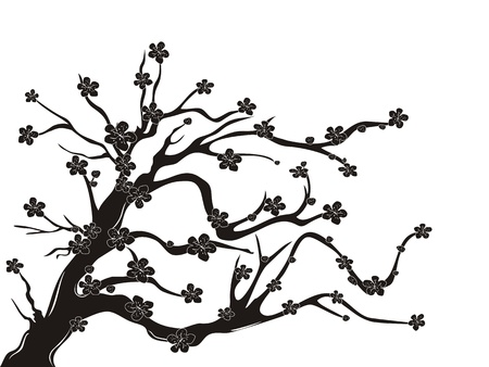 cherry pattern: the silhouette of cherry blossom tree on white background