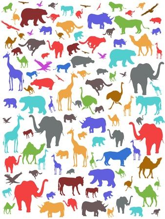 원활한 다채로운 아프리카 동물 패턴