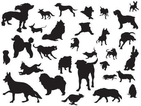 dog running: the set of dogs silhouette  Illustration