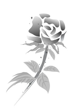 rosa: rose flower -chinese painting-black & white version
