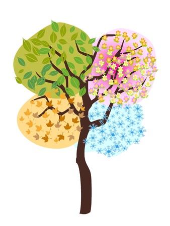 cíclico: árbol estacional, primavera, verano, otoño, invierno