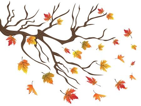 떨어지는 단풍 나무의 배경