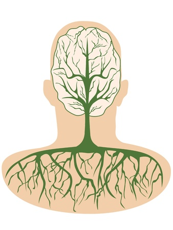 human anatomy organs: Human brain in the form of a tree growing inside the human body Illustration