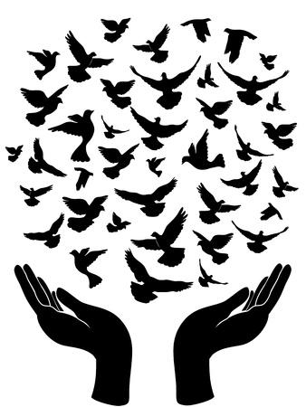le symbole de la paix des mains de la libération de pigeon de la paix