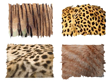 four different kind of feline animals fur patterns Vector